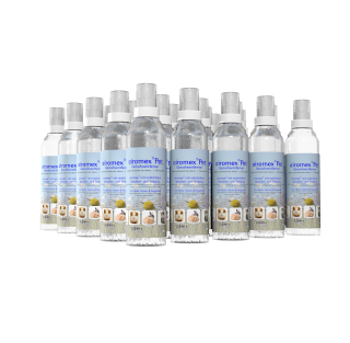 PET Spray Gebinde (25 St.)
